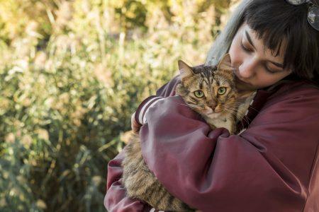 chat-attaché-affectivement-humain